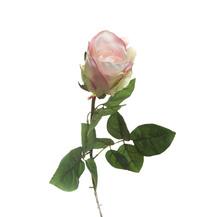 Роза розово-лиловая (7A14X00008)
