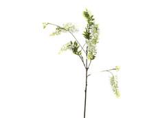 Цветок гороха (7A40N00002)