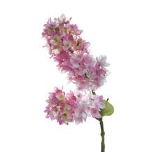 Сирень розовая (7A22A00001)