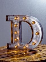 Стальная Буква D (12038)